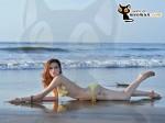 Bộ ảnh bikini và bộ ảnh đi làm từ thiện của thí sinh Miss Parkson (48)