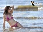 Bộ ảnh bikini và bộ ảnh đi làm từ thiện của thí sinh Miss Parkson (40)
