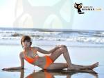 Bộ ảnh bikini và bộ ảnh đi làm từ thiện của thí sinh Miss Parkson (27)