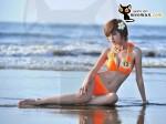 Bộ ảnh bikini và bộ ảnh đi làm từ thiện của thí sinh Miss Parkson (15)